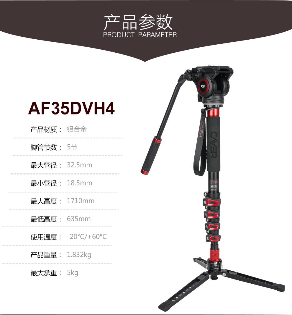 AF35DVH4_11.jpg